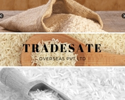 Tsoverseas: Supplier of Automotive Components,  Fly Ash,  Dairy Products