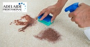 Get Your Carpet Cleaned with Adelaide Professional Carpet Cleaning